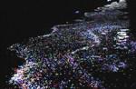 どんぐり村 天の川.jpg