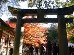 仁比山神社1.JPG