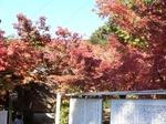 仁比山神社2.JPG